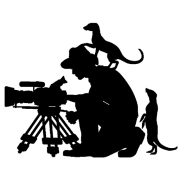 logo_WildlifeObservationsWorldwideMCg4D0RHBaw0A